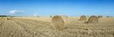 Hay Bales in a Field  Veules-Les-Roses  Saint-Valery-En-Caux  Blere  Seine-Maritime