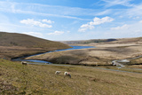 A Landscape View of Elan Valley  Powys  Wales  United Kingdom  Europe