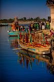 Colorful Boats at the Holi Festival  Vrindavan  Uttar Pradesh  India  Asia