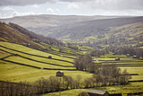 Swaledale  North Yorkshire  Yorkshire  England  United Kingdom  Europe