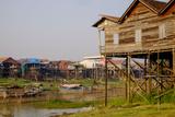 Stilt Houses in Village Along the Tonle Sap Lake  Kompong Kleang Village  Siem Reap Province