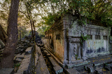 Temple of Beng Mealea  Built in 12th Century by King Suryavarman Ii  Siem Reap Province