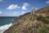 Wheal Coates Engine House  UNESCO World Heritage Site  and Coastline with Thrift Flowers