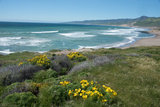 View of Jalama Beach County Park  Near Lompoc  California  United States of America  North America
