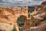Natural Bridge  Bryce Canyon National Park  Utah  United States of America  North America