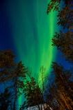 Aurora Borealis (The Northern Lights) over Kakslauttanen Igloo West Village  Saariselka  Finland