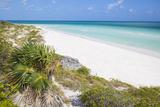 Sand Dunes at Playa Pilar  Cayo Guillemo  Jardines Del Rey  Ciego De Avila Province  Cuba