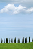 Val D'Orcia  UNESCO World Heritage Site  Tuscany  Italy  Europe