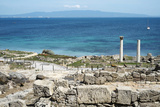 The Phoenician Roman Port of Tharros  Sardinia  Italy  Mediterranean  Europe