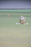Pirogue  a Traditional Madagascar Sailing Boat  Ifaty Beach  Madagascar  Africa