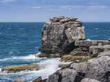Pulpit Rock Coastal Feature at Portland Bill  Isle of Portland  Jurassic Coast