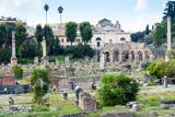Forum of Nerva  Roman Forum (Foro Romano)  UNESCO World Heritage Site  Rome  Lazio  Italy  Europe