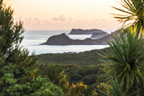 Bay of Islands Coastline at Sunrise  Seen from Russell  Northland Region  North Island  New Zealand
