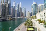 Dubai Marina  Dubai  United Arab Emirates  Middle East