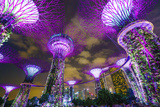 Supertree Grove in the Gardens by the Bay  a Futuristic Botanical Gardens and Park