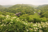 Monsal Trail Crosses Monsal Dale on Monsal Head Viaduct  Limestone Dale Scenery in Summer