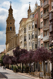 Calle Portales with Santa Maria De La Redonda Cathedral in Logrono  La Rioja  Spain  Europe