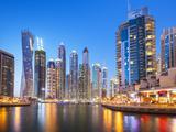 Dubai Marina Skyline at Night  Dubai City  United Arab Emirates  Middle East