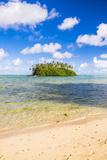 Tropical Island of Motu Taakoka Covered in Palm Trees in Muri Lagoon  Rarotonga  Cook Islands