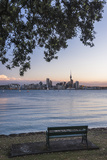 Auckland Skyline at Night Seen from Bayswater  Auckland  North Island  New Zealand  Pacific