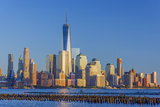 New York Skyline  Manhattan  Lower Manhattan and World Trade Center