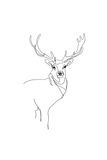 Stag *Exclusive*
