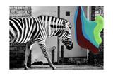 Pigment Smudge  Zebra