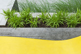 Grasses and Perennial Plants in Wooden Planter in Modern Garden with Detail of Plastic Seating