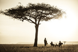 Kenya  Mara North Conservancy a Couple Enjoy a Sundowner
