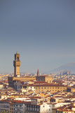 Italy  Tuscany  Florence Palazzo Vecchio and Overview of Surroundings