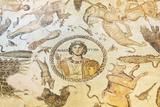 Turkey  Eastern Anatolia  Hatay  Mosaic Museum; Yakto Mosaic