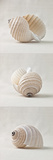 Seashell Trio III