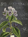Vintage Botanical - Wildflower