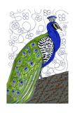 Penelope Peacock