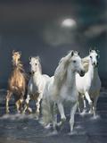 Dream Horses 020
