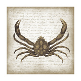 Crab II