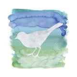 Watercolor Bi4