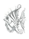 Aquatic Fish 2 Pencil
