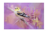 Abstract Goldfinch