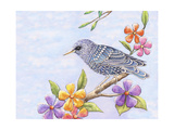 Starling Bird with Flowers