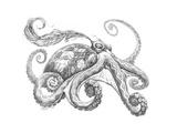 Aquatic Octopus Pencil