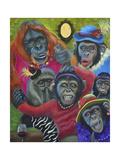 Monkey Selfies