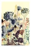 Sundry Blossoms II Giclée premium par Grace Popp