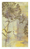 Dandelion Dance I