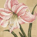 Blooming Wonder II