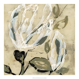Flower Pods I Giclée premium par Jennifer Goldberger