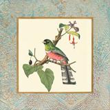 Bel Air Songbirds II