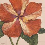 Island Hibiscus I