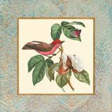 Bel Air Songbirds I