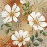 Siena White I